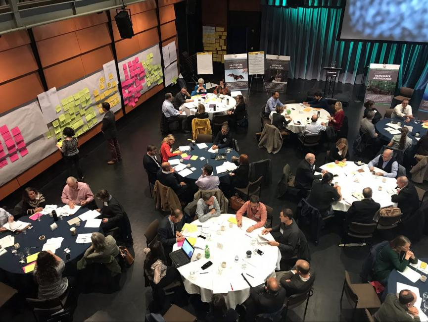 Overhead view of participants working in small groups at the Cutting the Green Tape roll-out meeting