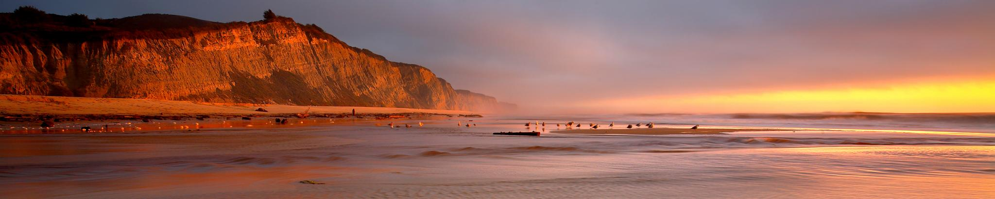 Warmly illuminated cliffs, birds, and rippling water at a beach at sunset
