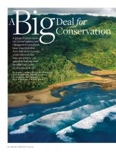 A Big Deal for Conservation, Stanford Social Innovation Review, 2012
